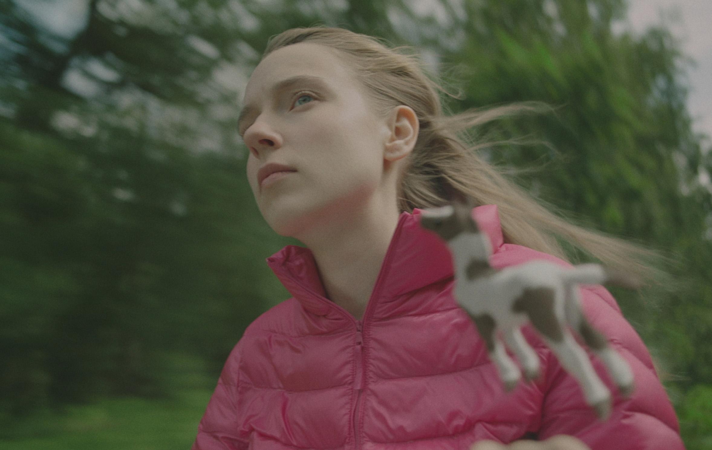 Photo du film Wild Horses